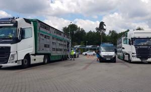 Inspektorzy skontrolowali transporty na MOP Knurów