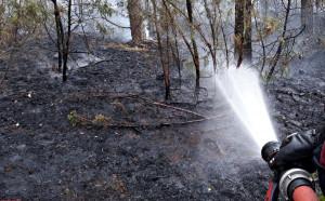 Działania gaśnicze trwały niemal 8 godzin, Foto: OSP Młodzieszyn