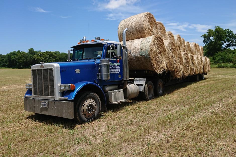 Travis posiada 7 ciężarówek, z czego 5 kupił przy wykorzystaniu dofinansowania na zakup sprzętu przyjaznego dla środowiska