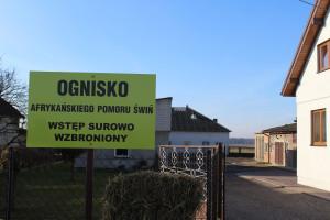 Dwa ogniska ASF w woj. warmińsko-mazurskim i mazowieckim