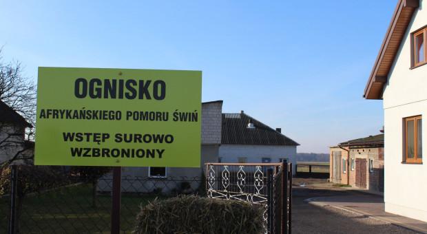 Mazowieckie: Z powodu ASF strefa ograniczeń w czterech gminach powiatu płockiego