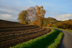 Ukraina pracuje nad lepszym modelem otwarcia rynku gruntów rolnych
