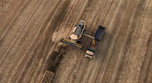Rosja: Do 1 sierpnia zebrano 54,3 mln ton zbóż i bobowatych