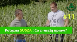 Agrorewolucje #11: Potężna susza. Kukurydza zagrożona, co z resztą upraw?