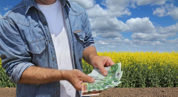 Dopłaty do wysokobiałkowych będą w tym roku wysokie?