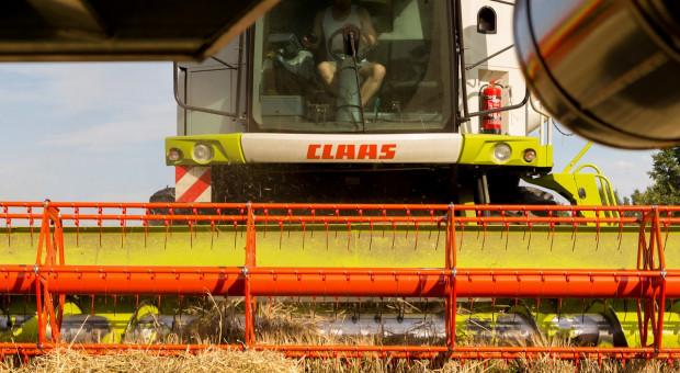 Ukraina: Zboża i bobowate zebrano z ponad 9 mln hektarów