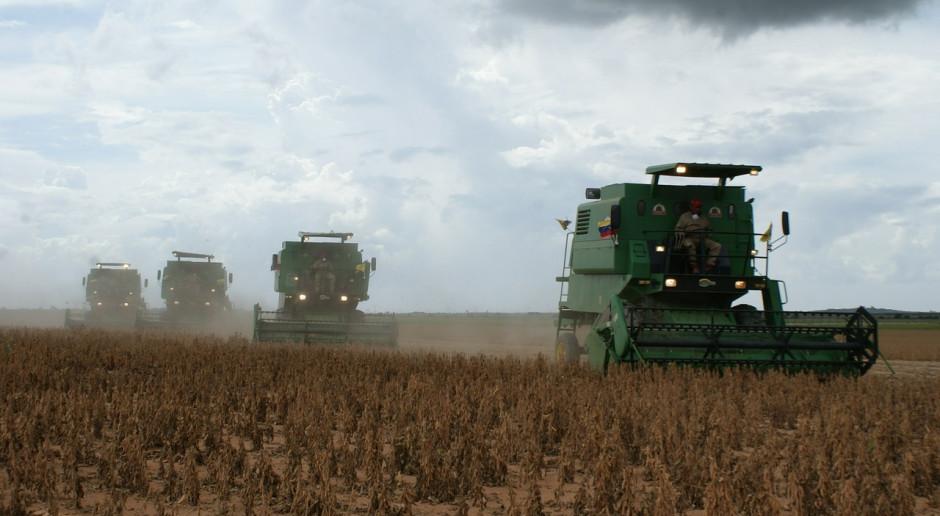Chiny będą importować soję  i pszenicę z Rosji