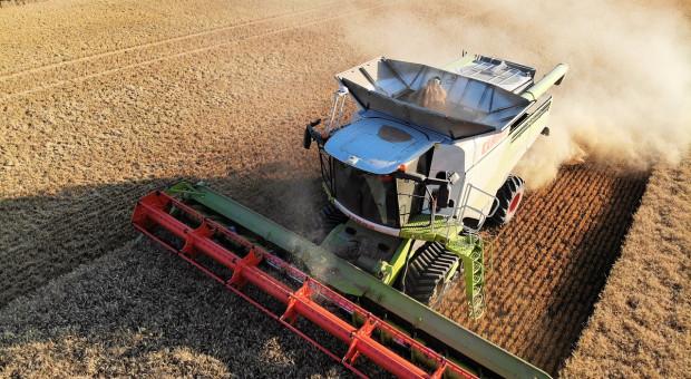 Rosja: Do 15 sierpnia zebrano 67,8 mln ton zbóż i bobowatych