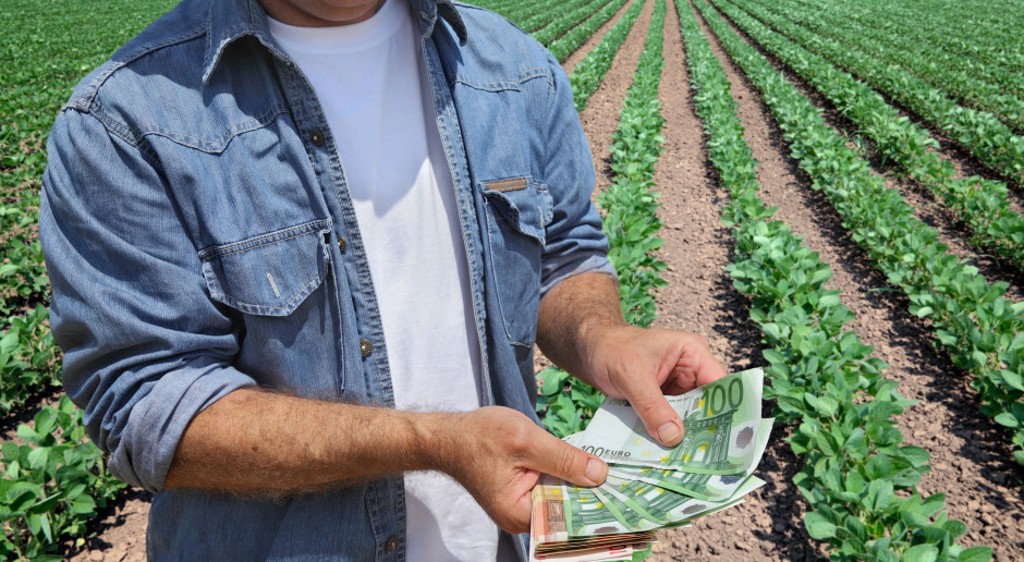 Małe gospodarstwa z jednakowym ryczałtem z tytułu dopłat bezpośrednich