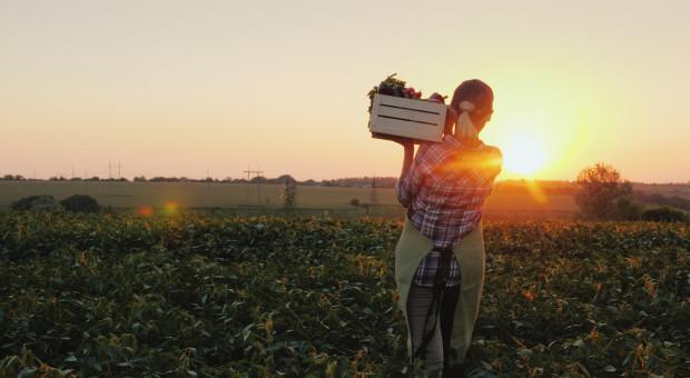 Hiszpania ma największy areał upraw ekologicznych w UE