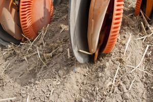Dobór redlicy siewnej zależy od technologii uprawy