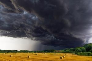 """""""Inwestycje odtwarzające potencjał produkcji rolnej"""" z PROW"""