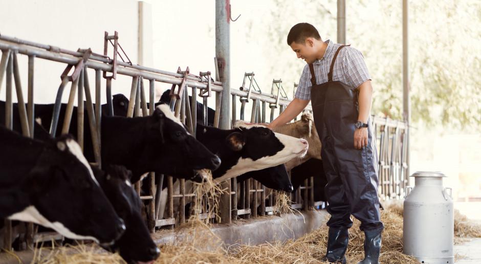 Organizacja producentów uznana dopiero po przedstawieniu biznesplanu