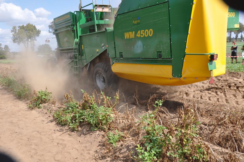 Bardzo ważnym zabiegiem fitosanitarnym jest odkażanie maszyn po zakończeniu prac na danym polu i przed wjechaniem na nowe. Powinno się odkazić wszystkie elementy mające kontakt z glebą. Trzeba uwzględnić również koła ciągników i przyczep transportujących