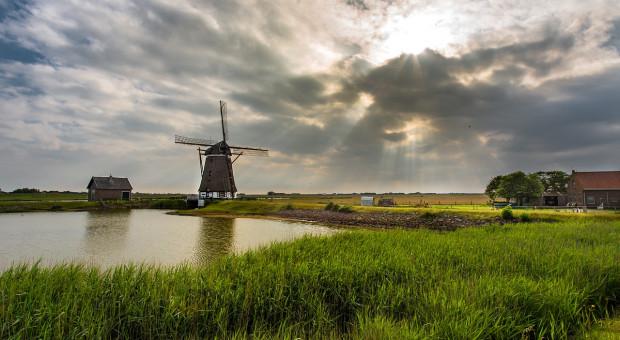 Holandia: Ma powstać nowa partia rolnicza