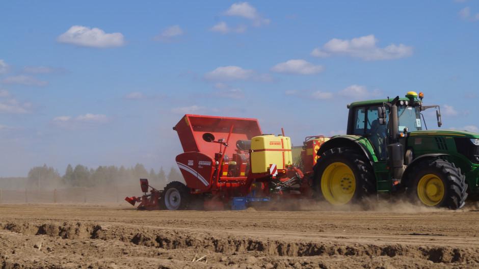 Czterorzędowa sadzarka kubełkowa Grimme GL 430 o modułowej budowie, z aktywną funkcją uprawy, aplikacją nawozu i śor, sadzeniem i tworzeniem redliny.