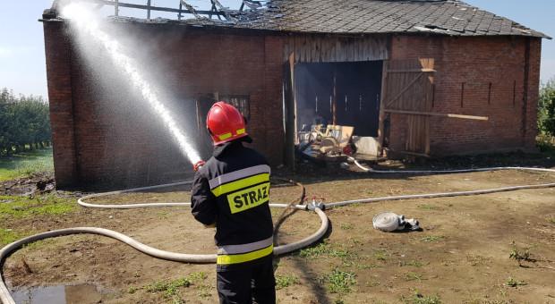 Pożary w trzech gospodarstwach – ogromne straty