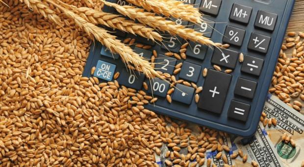 Aktualne ceny zbóż i rzepaku