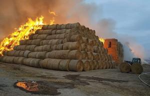 Tak pożar wyglądał w piątek za dnia, Foto: OSP Pustków Wilczkowski