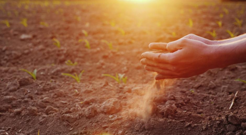 Ekspert IMGW: Prognoza sezonowa pogody nie wygląda optymistycznie dla rolników