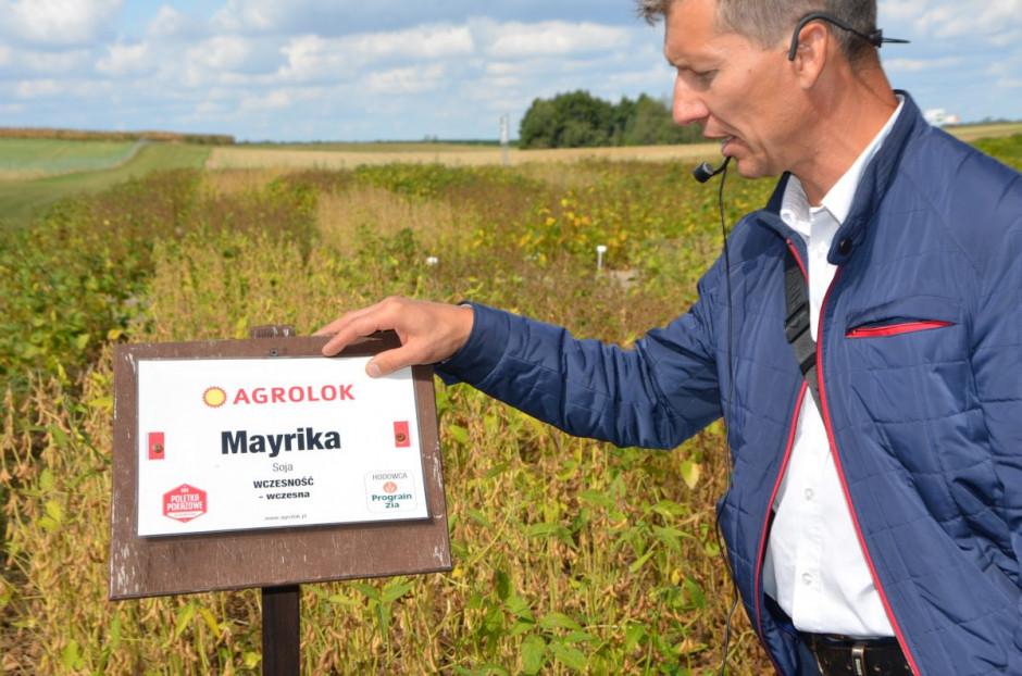 Mariusz Kowalski z Agrolok prezentuje kolekcje odmian soi, fot. M. Tyszka
