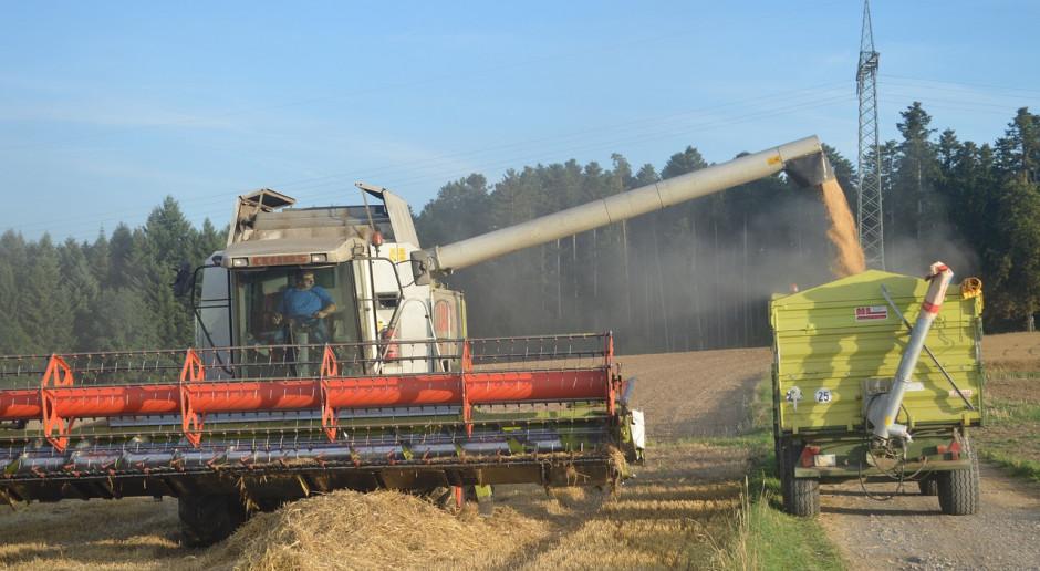 W Rosji zebrano prawie 90 mln ton zbóż i bobowatych
