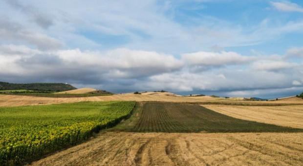KOWR ma 250 ha pod inwestycje