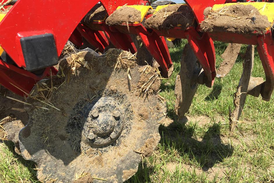 Jak przygotować glebę do siewu, jeśli zrezygnujemy z pługa?