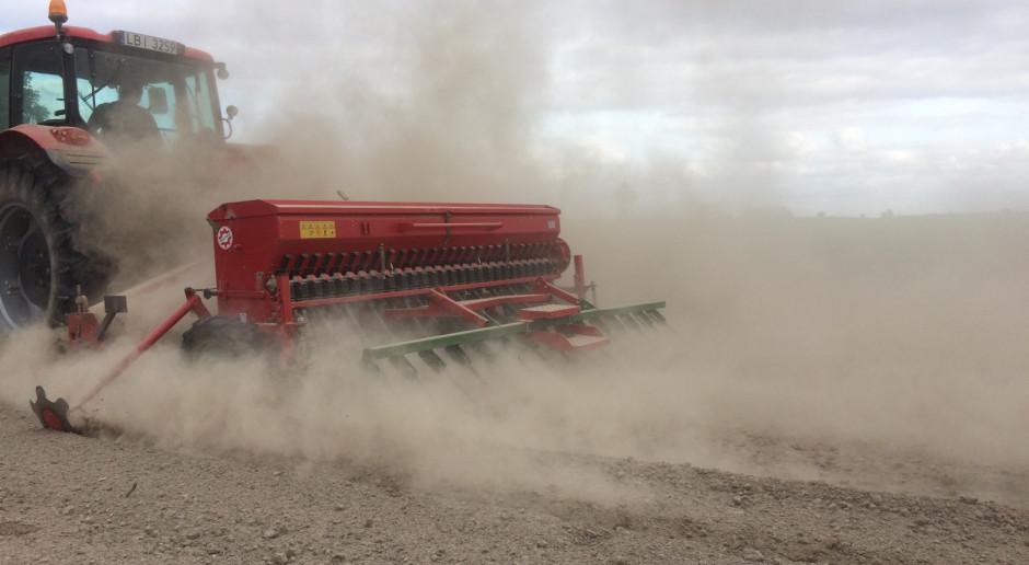 Nadal sucho – problem z siewami zbóż, rzepak usycha