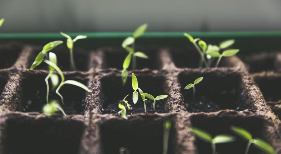 UE: Presja na patenty roślinne