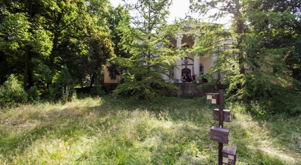 Rola pasów kwietnych w rolnictwie - wyniki badań w gospodarstwie ekologicznym w Juchowie