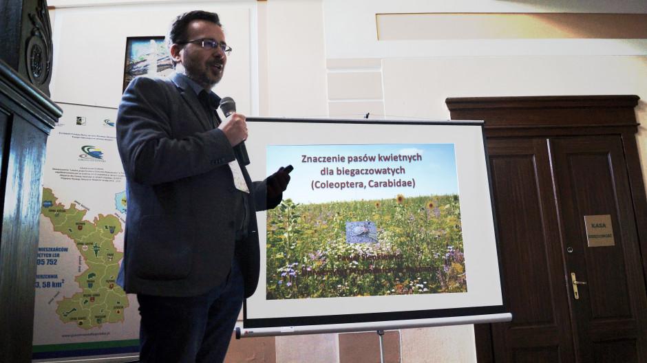 Według dr. Sienkiewicza pasy kwietne spełniły w odniesieniu do biegaczowatych funkcję ostojową i korzystnie wpłynęły na strukturę zgrupowań tych owadów między pasami.