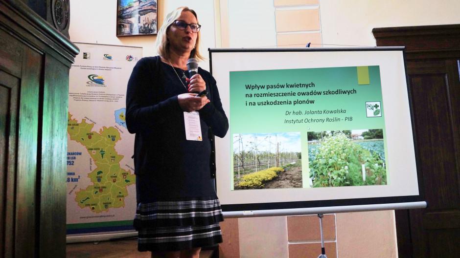 Dr hab. Jolanta Kowalska analizowała rozmieszczenie owadów szkodliwych i uszkodzenia marchwi.