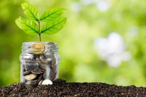 RPO w kwestii opodatkowania sprzedaży kilku działek