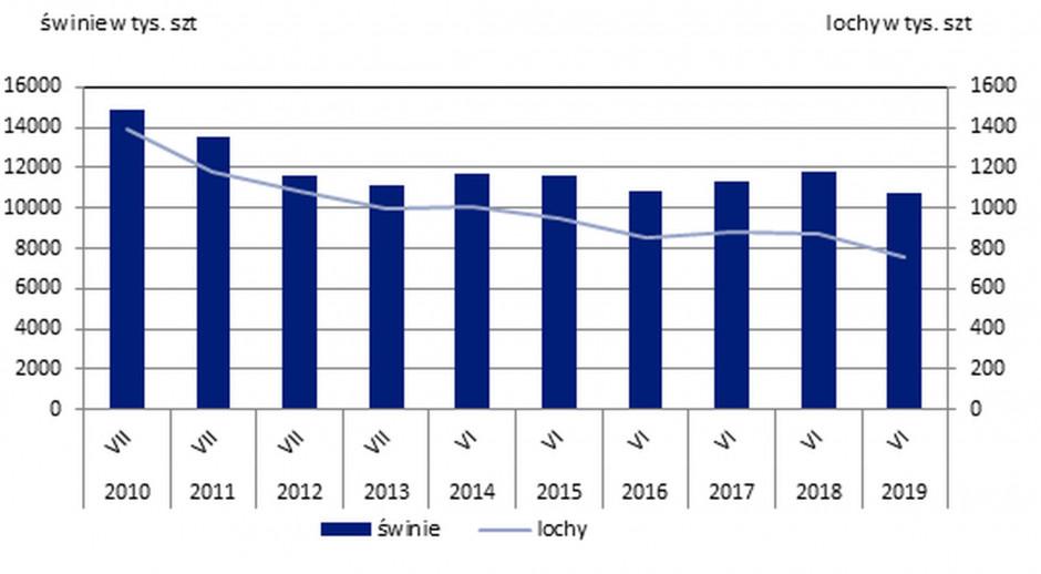 Pogłowie trzody chlewnej i loch w latach 2010 – 2019, GUS