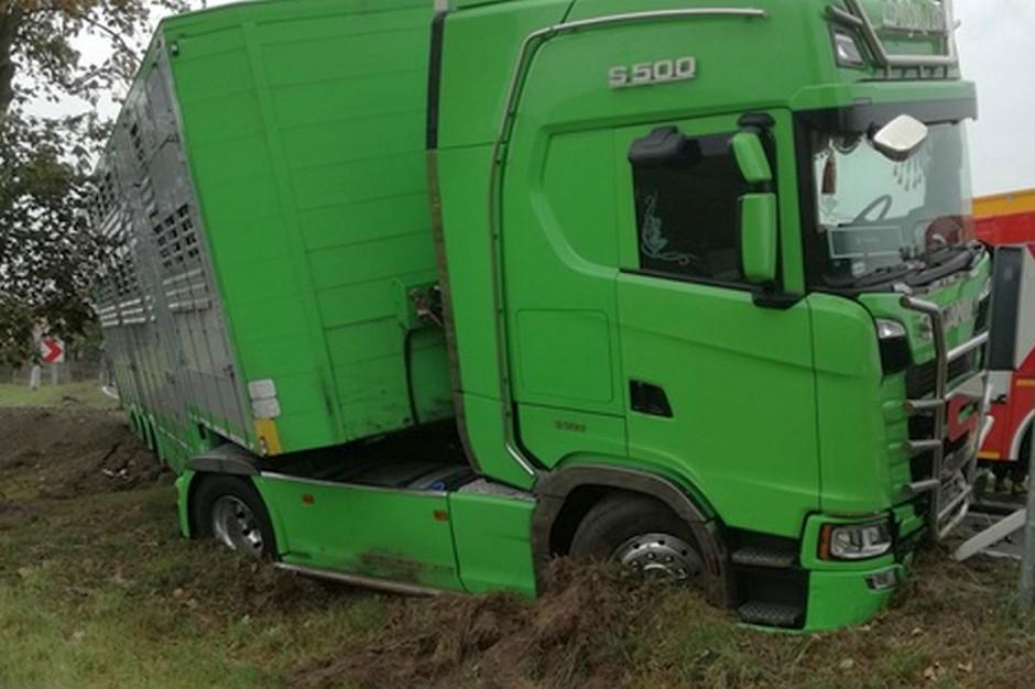 Policja bada przyczyny tragicznego wypadku, Foto: KP PSP Konin