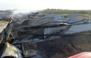 W chlewni spłonęło ponad 2,5 tys. świń