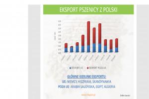 Mirosław Marciniak z Infograin opowiedział między innymi o exporcie pszenicy z Polski.