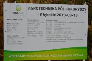 Centralne Dni Kukurydzy PROCAM we wsi Głębokie; Fot. Katarzyna Szulc