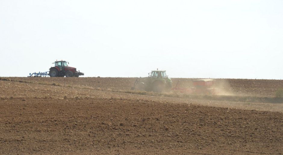 Chwilowa poprawa wilgotności gleby