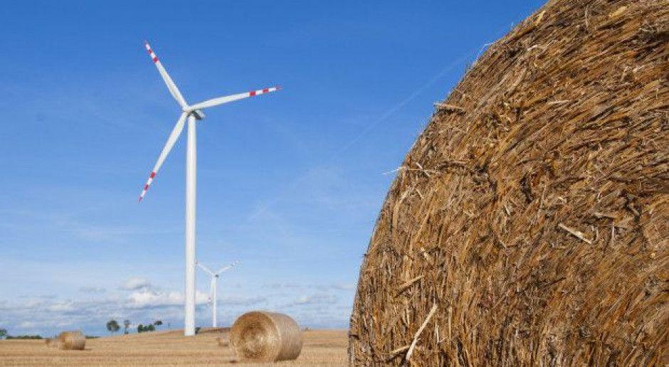 Senat nie chce, by KOWR mógł przekazywać grunty rolne pod OZE