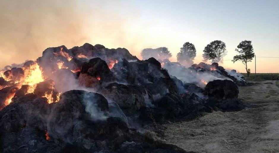 Na polu spłonęło kilkaset bel słomy