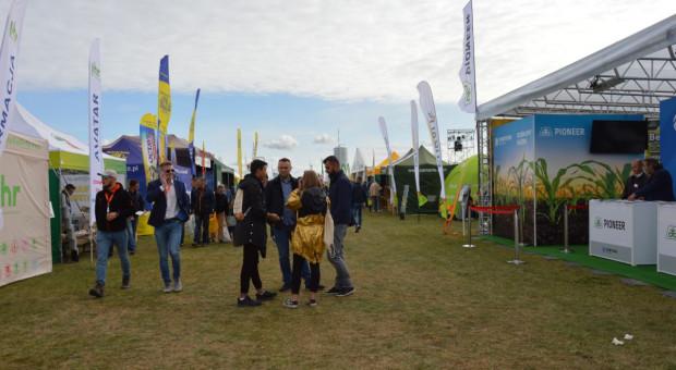Aleja hodowlano-nasienna na Agro Show 2019