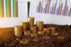 ARiMR o średniej wielkości gospodarstwa zgłoszonego do dopłat w 2019 roku