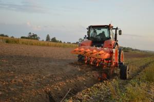 Wyrównana powierzchnia pola była rezultatem dobrego ustawienia pługa