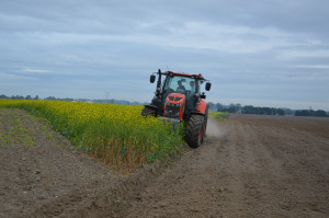 Około godziny 10.30 ciągnik rozpoczął orkę pola na którym zasiany był poplon