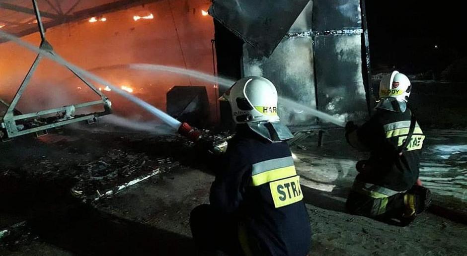 Pożar kurnika na Kaszubach