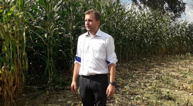 Potas pod kukurydzę już w lutym