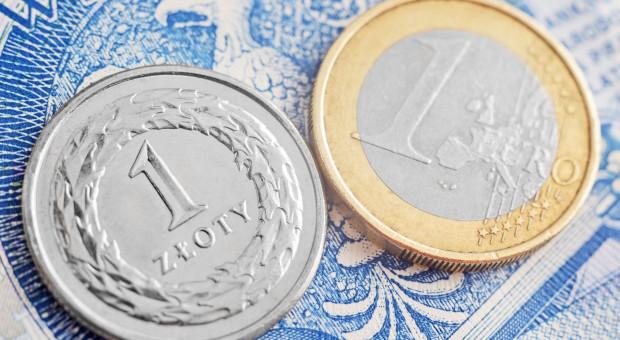 Dziś poznamy stawki dopłat bezpośrednich, euro droższe niż w ubiegłym roku