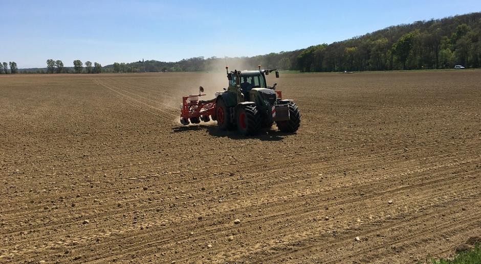 Rosja: Zebrano prawie 110 mln ton zbóż i bobowatych